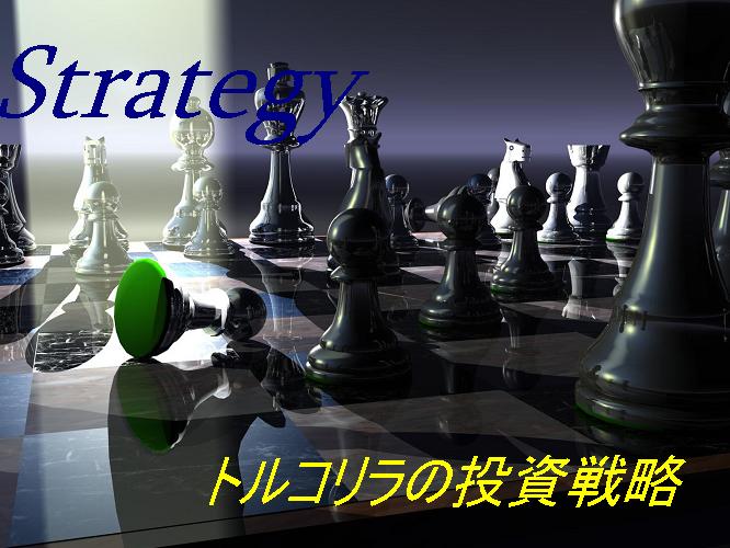 トルコリラのトレード戦略